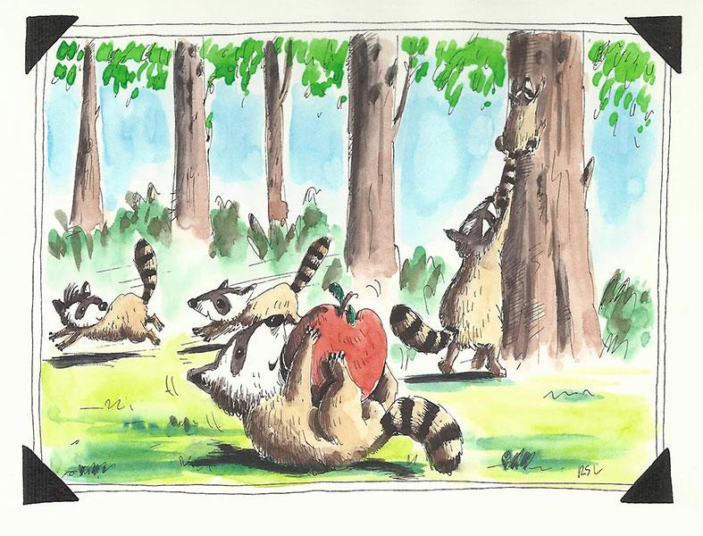 mapaches1